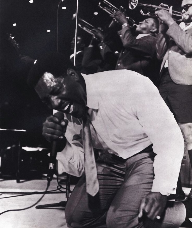Otis on His Knees Monterey Pop