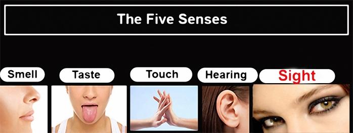 Photo Image of Senses (sight)